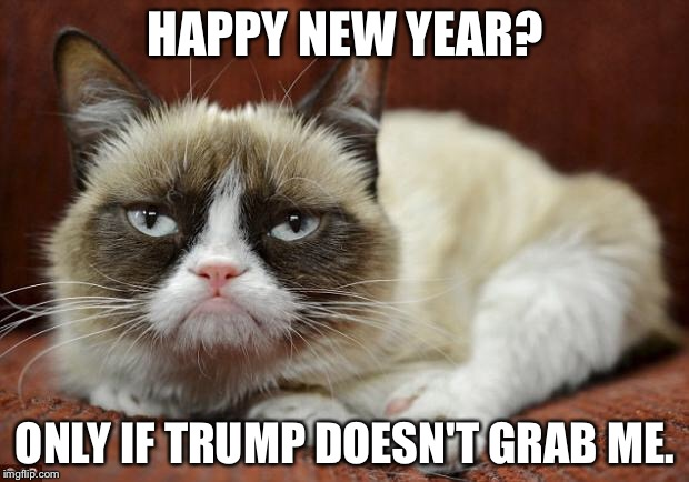 Grumpy Cat New Year | HAPPY NEW YEAR? ONLY IF TRUMP DOESN'T GRAB ME. | image tagged in grumpy cat new year | made w/ Imgflip meme maker