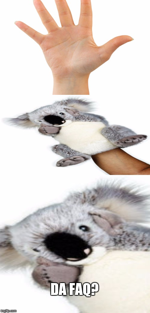 I always thought these things were weird | DA FAQ? | image tagged in memes,shocked koala,hand | made w/ Imgflip meme maker