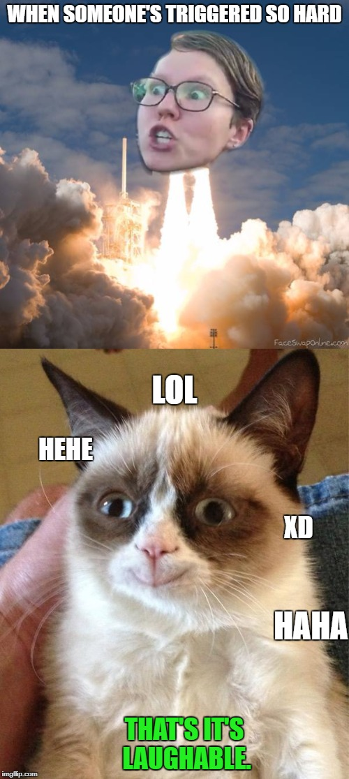 Lol trigger rocket | WHEN SOMEONE'S TRIGGERED SO HARD THAT'S IT'S LAUGHABLE. HEHE HAHA XD LOL | image tagged in triggered flounce blast off,grump cat smile | made w/ Imgflip meme maker