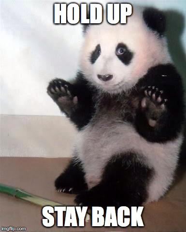 Hands Up panda | HOLD UP STAY BACK | image tagged in hands up panda | made w/ Imgflip meme maker