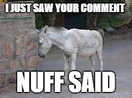 I JUST SAW YOUR COMMENT NUFF SAID | image tagged in meme comments | made w/ Imgflip meme maker