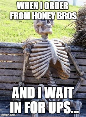 Waiting Skeleton Meme | WHEN I ORDER FROM HONEY BROS AND I WAIT IN FOR UPS... | image tagged in memes,waiting skeleton | made w/ Imgflip meme maker