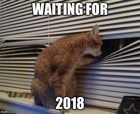WAITING FOR 2018 | image tagged in cat looking through blinds,memes | made w/ Imgflip meme maker