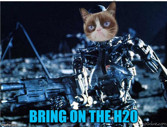 grump cat terminator | BRING ON THE H20 | image tagged in grump cat terminator | made w/ Imgflip meme maker