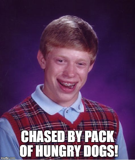 Bad Luck Brian Meme | CHASED BY PACK OF HUNGRY DOGS! | image tagged in memes,bad luck brian | made w/ Imgflip meme maker