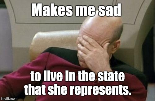 Captain Picard Facepalm Meme | Makes me sad to live in the state that she represents. | image tagged in memes,captain picard facepalm | made w/ Imgflip meme maker