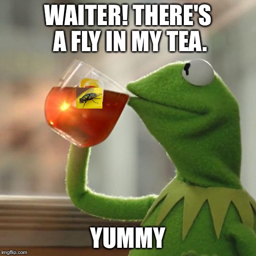 I'm glad you like it. | WAITER! THERE'S A FLY IN MY TEA. YUMMY | image tagged in memes,but thats none of my business,kermit the frog | made w/ Imgflip meme maker