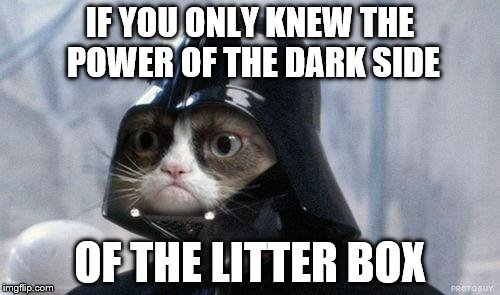 Grumpy Cat Star Wars Meme | IF YOU ONLY KNEW THE POWER OF THE DARK SIDE OF THE LITTER BOX | image tagged in memes,grumpy cat star wars,grumpy cat | made w/ Imgflip meme maker