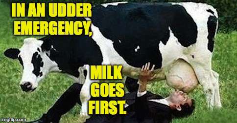 IN AN UDDER EMERGENCY, MILK GOES FIRST. | made w/ Imgflip meme maker