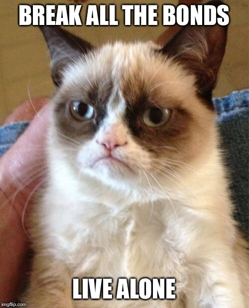 Grumpy Cat Meme | BREAK ALL THE BONDS LIVE ALONE | image tagged in memes,grumpy cat | made w/ Imgflip meme maker