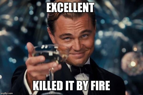 Leonardo Dicaprio Cheers Meme | EXCELLENT KILLED IT BY FIRE | image tagged in memes,leonardo dicaprio cheers | made w/ Imgflip meme maker
