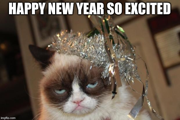 Grumpy Cat New Years | HAPPY NEW YEAR SO EXCITED | image tagged in grumpy cat new years | made w/ Imgflip meme maker