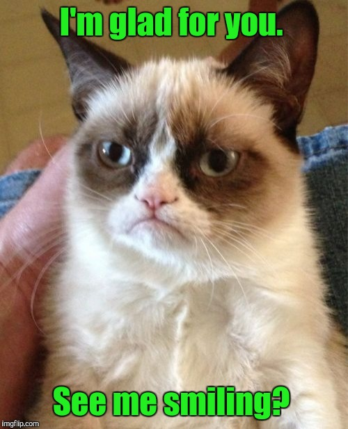 Grumpy Cat Meme | I'm glad for you. See me smiling? | image tagged in memes,grumpy cat | made w/ Imgflip meme maker