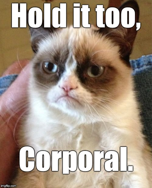 Grumpy Cat Meme | Hold it too, Corporal. | image tagged in memes,grumpy cat | made w/ Imgflip meme maker