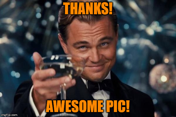 Leonardo Dicaprio Cheers Meme | THANKS! AWESOME PIC! | image tagged in memes,leonardo dicaprio cheers | made w/ Imgflip meme maker