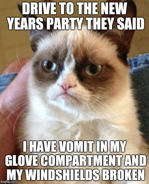 Grumpy Cat Meme | DRIVE TO THE NEW YEARS PARTY THEY SAID I HAVE VOMIT IN MY GLOVE COMPARTMENT AND MY WINDSHIELDS BROKEN | image tagged in memes,grumpy cat | made w/ Imgflip meme maker