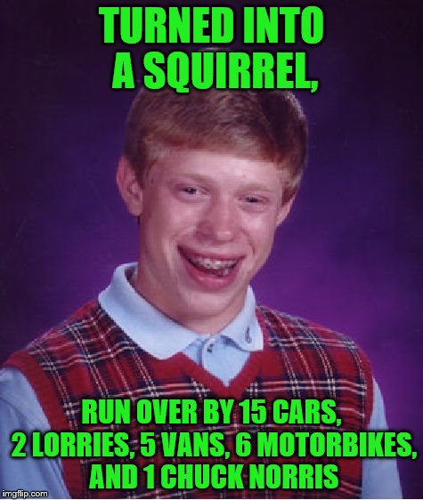 Bad Luck Brian Meme | TURNED INTO A SQUIRREL, RUN OVER BY 15 CARS, 2 LORRIES, 5 VANS, 6 MOTORBIKES, AND 1 CHUCK NORRIS | image tagged in memes,bad luck brian | made w/ Imgflip meme maker