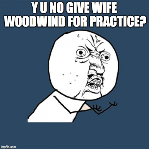Y U No Meme | Y U NO GIVE WIFE WOODWIND FOR PRACTICE? | image tagged in memes,y u no | made w/ Imgflip meme maker