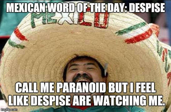 mexican word of the day | MEXICAN WORD OF THE DAY: DESPISE CALL ME PARANOID BUT I FEEL LIKE DESPISE ARE WATCHING ME. | image tagged in mexican word of the day | made w/ Imgflip meme maker