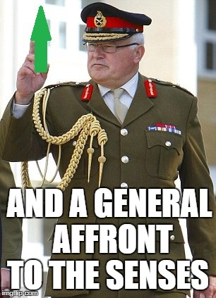 AND A GENERAL AFFRONT TO THE SENSES | made w/ Imgflip meme maker