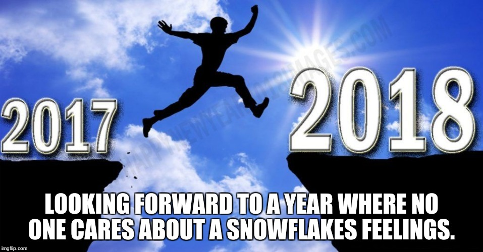 LOOKING FORWARD TO A YEAR WHERE NO ONE CARES ABOUT A SNOWFLAKES FEELINGS. | image tagged in new year 2018 | made w/ Imgflip meme maker