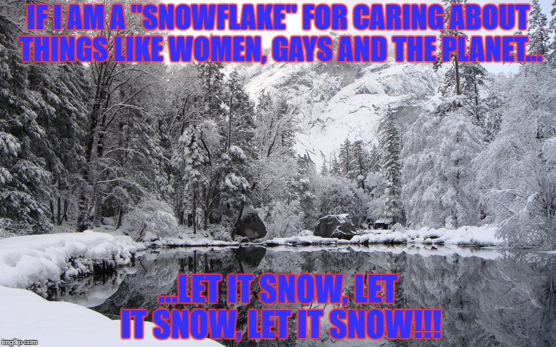 "If I am a snowflake | IF I AM A ""SNOWFLAKE"" FOR CARING ABOUT THINGS LIKE WOMEN, GAYS AND THE PLANET... ...LET IT SNOW, LET IT SNOW, LET IT SNOW!!! 