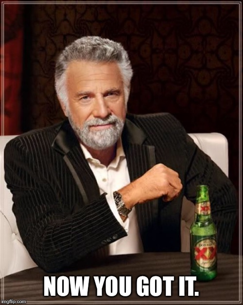 The Most Interesting Man In The World Meme | NOW YOU GOT IT. | image tagged in memes,the most interesting man in the world | made w/ Imgflip meme maker