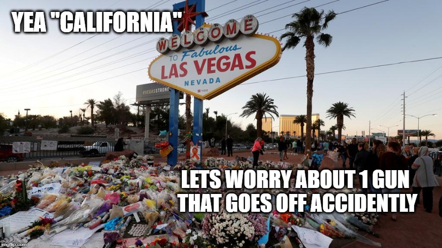 "Too Many Guns | YEA ""CALIFORNIA"" LETS WORRY ABOUT 1 GUN THAT GOES OFF ACCIDENTLY 