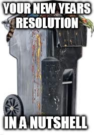 Ow like you were going to do it  | YOUR NEW YEARS RESOLUTION IN A NUTSHELL | image tagged in trash,new years | made w/ Imgflip meme maker