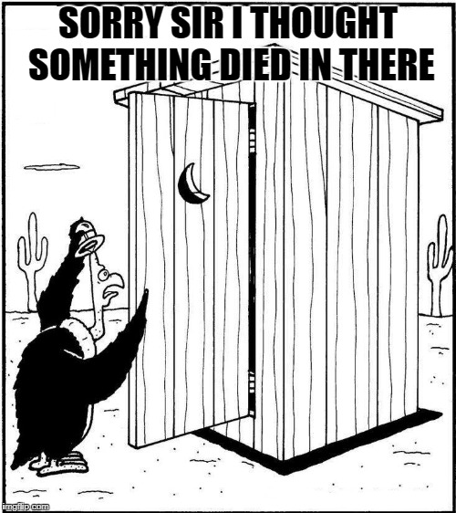 something died in there | SORRY SIR I THOUGHT SOMETHING DIED IN THERE | image tagged in outhouse | made w/ Imgflip meme maker