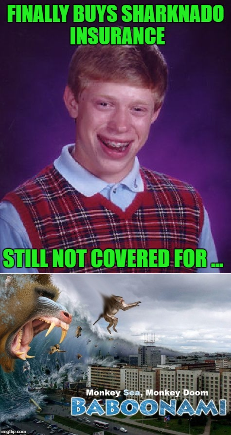 If it's not one disaster it's another!!! | FINALLY BUYS SHARKNADO INSURANCE STILL NOT COVERED FOR ... | image tagged in bad luck brian,memes,sharknado,funny,baboonami,insurance | made w/ Imgflip meme maker