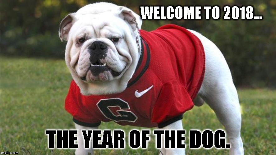 WELCOME TO 2018... THE YEAR OF THE DOG. | image tagged in uga | made w/ Imgflip meme maker