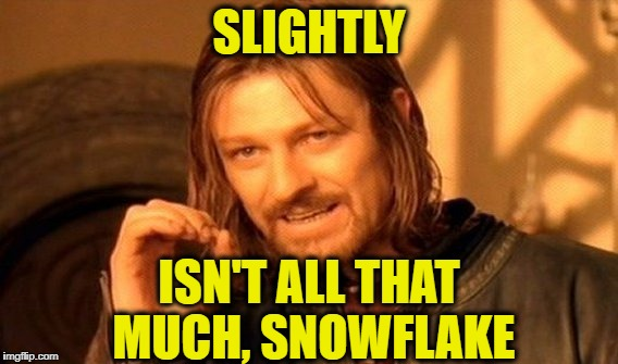 One Does Not Simply Meme | SLIGHTLY ISN'T ALL THAT MUCH, SNOWFLAKE | image tagged in memes,one does not simply | made w/ Imgflip meme maker