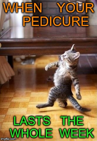 Cool Cat Stroll Meme | WHEN    YOUR    PEDICURE LASTS   THE  WHOLE  WEEK | image tagged in memes,cool cat stroll | made w/ Imgflip meme maker