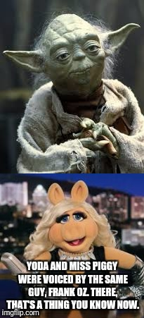 YODA AND MISS PIGGY WERE VOICED BY THE SAME GUY, FRANK OZ. THERE, THAT'S A THING YOU KNOW NOW. | image tagged in miss piggy,yoda | made w/ Imgflip meme maker