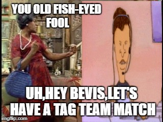 YOU OLD FISH-EYED FOOL UH,HEY BEVIS,LET'S HAVE A TAG TEAM MATCH | made w/ Imgflip meme maker