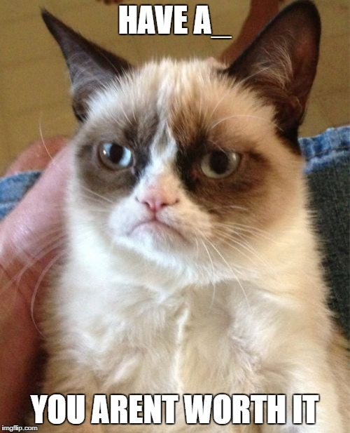 Grumpy Cat Meme | HAVE A_ YOU ARENT WORTH IT | image tagged in memes,grumpy cat | made w/ Imgflip meme maker