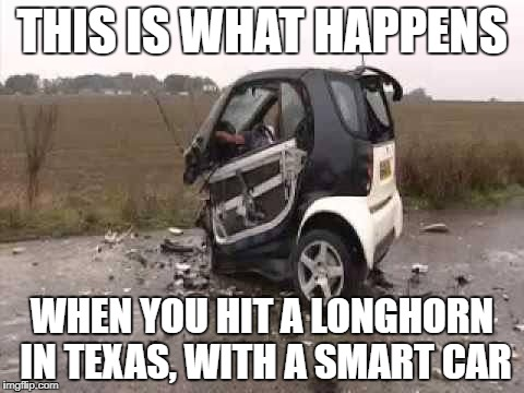 Smart Car Crash | THIS IS WHAT HAPPENS WHEN YOU HIT A LONGHORN IN TEXAS, WITH A SMART CAR | image tagged in smart car crash | made w/ Imgflip meme maker