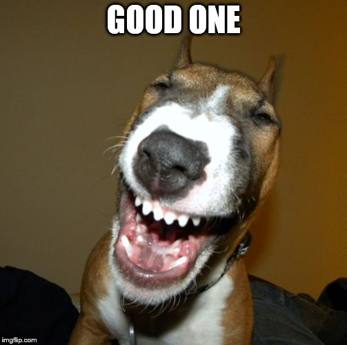 laughing dog | GOOD ONE | image tagged in laughing dog | made w/ Imgflip meme maker