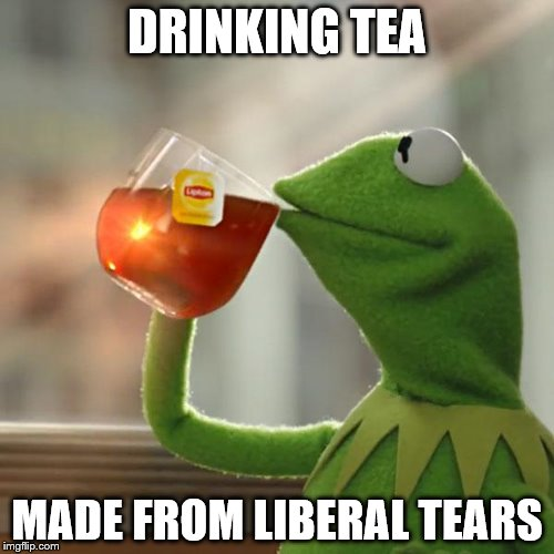 But Thats None Of My Business Meme | DRINKING TEA MADE FROM LIBERAL TEARS | image tagged in memes,but thats none of my business,kermit the frog | made w/ Imgflip meme maker