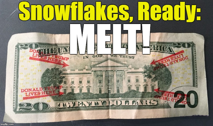 Melt some Snowflakes! | Snowflakes, Ready: MELT! | image tagged in trumpdollar,trump,college liberal,point and laugh,trump lives here | made w/ Imgflip meme maker