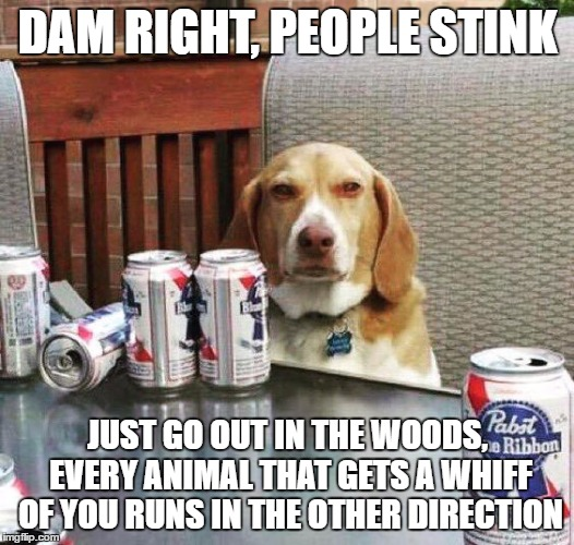 DAM RIGHT, PEOPLE STINK JUST GO OUT IN THE WOODS, EVERY ANIMAL THAT GETS A WHIFF OF YOU RUNS IN THE OTHER DIRECTION | made w/ Imgflip meme maker