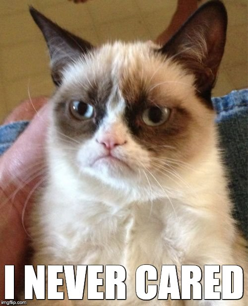 Grumpy Cat Meme | I NEVER CARED | image tagged in memes,grumpy cat | made w/ Imgflip meme maker