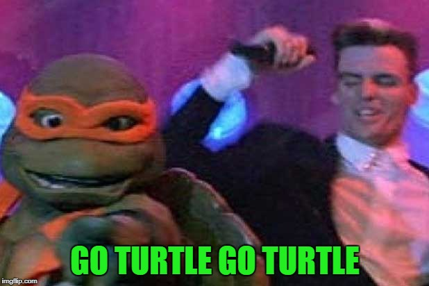 GO TURTLE GO TURTLE | made w/ Imgflip meme maker