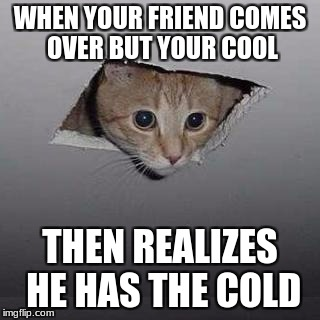 Ceiling Cat | WHEN YOUR FRIEND COMES OVER BUT YOUR COOL THEN REALIZES HE HAS THE COLD | image tagged in memes,ceiling cat | made w/ Imgflip meme maker