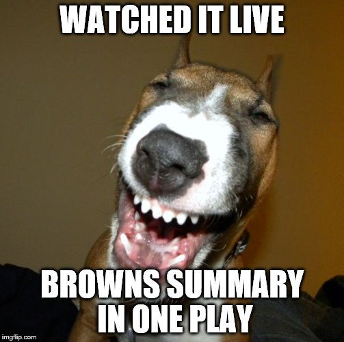 laughing dog | WATCHED IT LIVE BROWNS SUMMARY IN ONE PLAY | image tagged in laughing dog | made w/ Imgflip meme maker