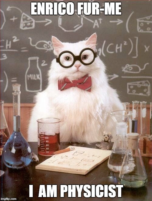 ENRICO FUR-ME I  AM PHYSICIST | image tagged in science cat | made w/ Imgflip meme maker
