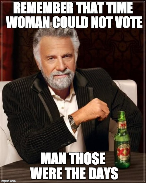 The Most Interesting Man In The World Meme | REMEMBER THAT TIME WOMAN COULD NOT VOTE MAN THOSE WERE THE DAYS | image tagged in memes,the most interesting man in the world | made w/ Imgflip meme maker