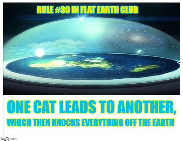 One cat leads to another, which then knocks everything off the earth. | RULE #39 IN FLAT EARTH CLUB ONE CAT LEADS TO ANOTHER, WHICH THEN KNOCKS EVERYTHING OFF THE EARTH | image tagged in flat earth dome,flat earth club,flat earth,rule 39,cats | made w/ Imgflip meme maker