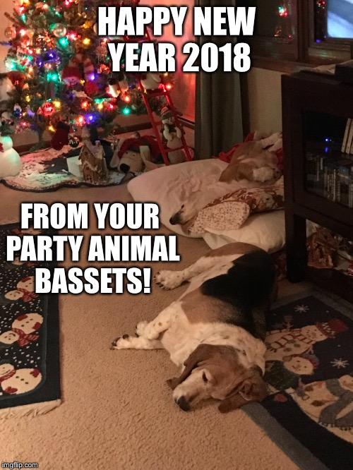 From the ever sleeping Basset Hounds | HAPPY NEW YEAR 2018 FROM YOUR PARTY ANIMAL BASSETS! | image tagged in memes,basset hound,sleeping,happy new year,drsarcasm | made w/ Imgflip meme maker